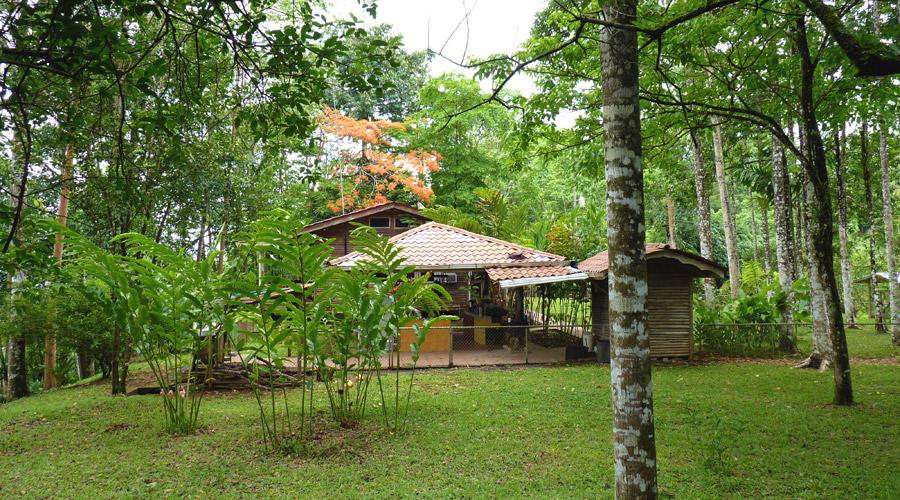 Toucan Lodge Exclusivite Costa Rica Immobilier